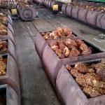 pengolahan kelapa sawit