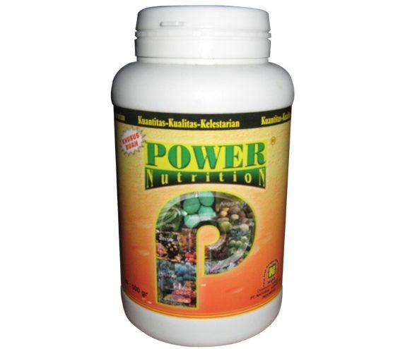 manfaat power nutrition