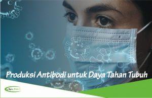 Manfaat Produksi Antibodi untuk Melawan Virus Corona dan Penyakit Lainnya