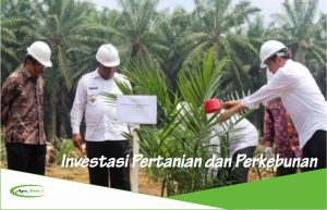 8 Kelebihan Melakukan Investasi di Bidang Pertanian dan Sektor Pangan