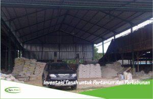 Investasi Tanah untuk Pertanian dan Perkebunan serta Tips Membuka Pabrik Pupuk