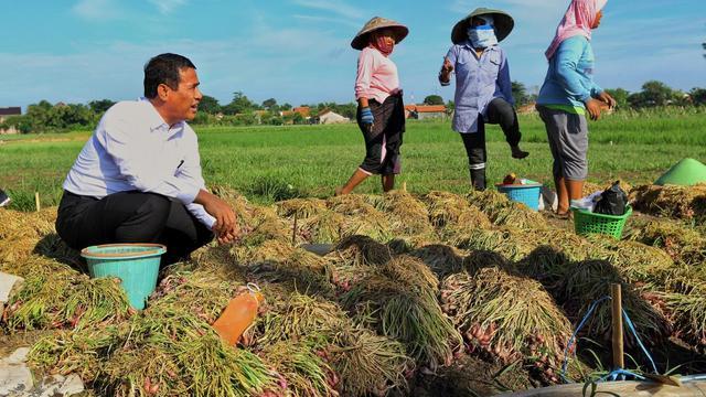 pertanian menjadi sektor investasi yang menjanjikan