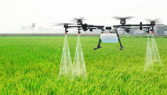 Investasi pertanian dan perkebunan