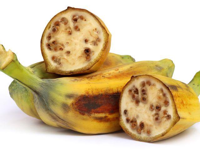 Jenis buah dan pohon pisang