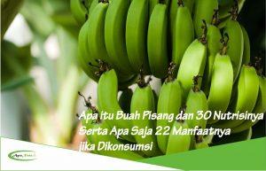 Apa itu Buah Pisang dan 30 Nutrisinya Serta Apa Saja 22 Manfaatnya jika Dikonsumsi